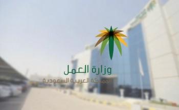 العمل: تعقد مذكرة تفاهم لتوظيف 40 الف سعودي وسعودية في اكثر من 10 تخصصات