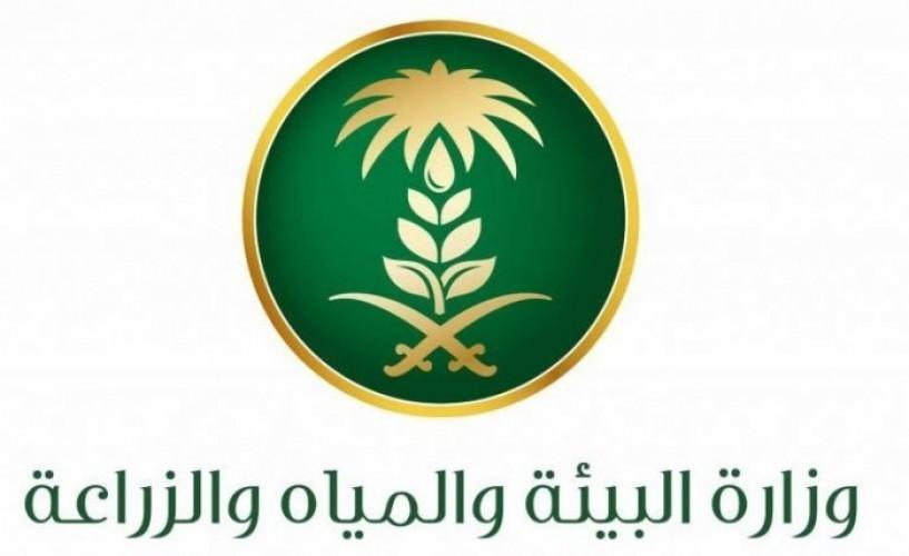 وزارة البيئة والمياه تعلن ترشيح 65 متقدمًا ومتقدمة للوظائف الإدارية