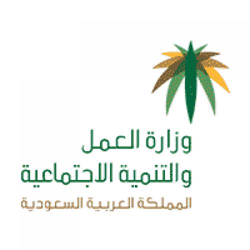 وزارة العمل والتنمية الاجتماعية توفر 15 وظيفة للجنسين بنظام العقود
