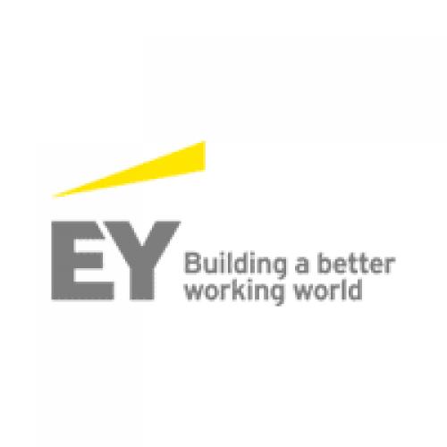 شركة إرنست ويونغ تعلن توفر وظيفة شاغرة بمجال الترجمة بمدينة الرياض