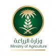 فيديو.. متحدث الزراعة 300 مليون ريال لدعم المزارعين