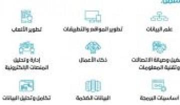 وزارة الاتصالات وتقنية المعلومات تعلن عن 8000 فرصة تدريبية للجنسين للتدريب عن بعد
