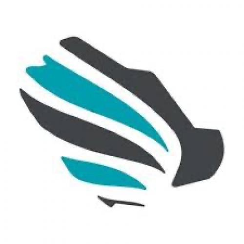 الاتحاد السعودي للأمن السيبراني والبرمجة والدرونز يوفر 4 وظائف تقنية عن بُعد
