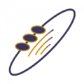 هيئة الإتصالات وتقنية المعلومات توفر وظيفة تقنية في مجال أمن المعلومات